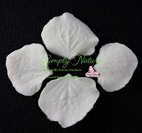 Hydrangea Petal Veiner Set By Simply Nature Botanically Correct Products