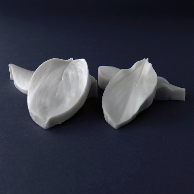 Ruscus Leaf Botanically Correct Veiner Set of 2 By Robert Haynes