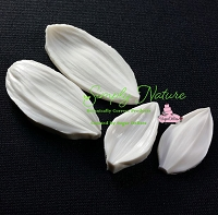Sunflower Petal Veiner Set By Simply Nature Botanically Correct Products