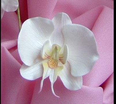 how to make fondant orchids without cutters