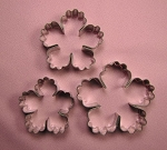 Fantasy Flower African Violet Set of 3