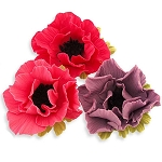 Anemone Cutter Set of 4 By JEM