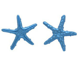 Starfish Mini Set 1
