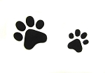 Paw Print Set By Jennifer Dontz