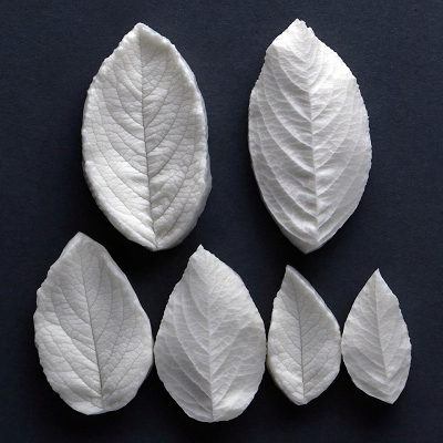 Rugosa Rose Leaves Veiner Set Of 3 Botanically Correct Products By Robert Haynes