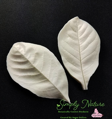 Northern Magnolia Leaf Veiner Large By Simply Nature Botanically Correct Products