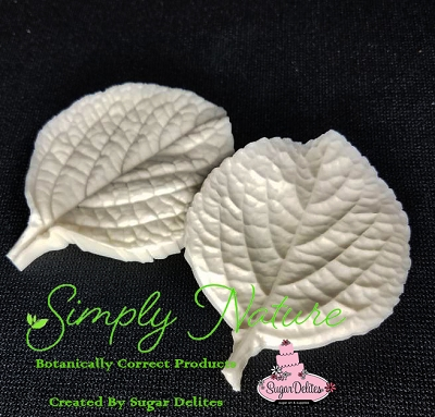 Purple Swedish Ivy Veiner Large By Simply Nature Botanically Correct Products