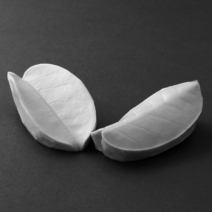 "The Stephanotis Medium leaf measures Medium L 9 cm x W 5.5 cm Medium (L 3 1/8"" x W 2 1/8"").This distinctive range of botanically correct products are designed by master sugar artist Robert Haynes.  These quality products can be used to replicate time and again, stunning life like flora in any edible or non-edible medium of your choice.  Robert personally selects each petal, leaf, flower center, fruit and bud to create a double-sided silicone mold capturing their shape, vein structure and unique botanical imprint, giving you the ultimate tools to reproduce stunning results.  All molds are hand poured at Sugar Delites (USA) using a high-quality platinum based silicone, specially formulated for use in the food and confectionary industry and fully compliant to FDA and EU regulations.  They can be purchased at www.SugarDelites.com and other worldwide locations. Copyright © 2016 - Sugar Flower Studio Botanically Correct Products"