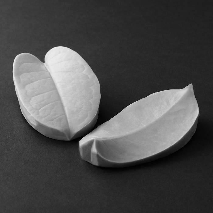 "The Stephanotis large leaf measures L 11 cm x W 6 cm. Large (L 3 5/8"" x W 2 1/2""). This distinctive range of botanically correct products are designed by master sugar artist Robert Haynes.  These quality products can be used to replicate time and again, stunning life like flora in any edible or non-edible medium of your choice.  Robert personally selects each petal, leaf, flower center, fruit and bud to create a double-sided silicone mold capturing their shape, vein structure and unique botanical imprint, giving you the ultimate tools to reproduce stunning results.  All molds are hand poured at Sugar Delites (USA) using a high-quality platinum based silicone, specially formulated for use in the food and confectionary industry and fully compliant to FDA and EU regulations.  They can be purchased at www.SugarDelites.com and other worldwide locations. Copyright © 2016 - Sugar Flower Studio Botanically Correct Products"