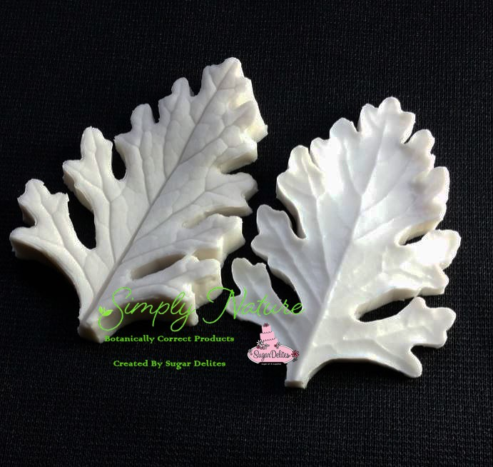 "Dusty Miller Leaf Veiner Medium by Simply Nature Botanically Correct Products®, was created by Jason Dontz and Jennifer Dontz of Sugar Delites, and creates the most realistic Dusty Miller leaf interpretation possible. The Dusty Miller leaf veiner measures 3"" x 2"". Simply Nature brand veiners capture each ruffle, pillow & vein because they were created from the actual top and the actual bottom of each leaf or petal, thus creating the most realistic replica of nature.  Botanically correct veiners leave room for your wire and will not cut your paste and since the veiners were created by nature, they also shape and form your medium as well. Each Simply Nature Brand veiner is made in the USA and is poured using the highest quality platinum based, food approved silicone. The matching cutter(s) for this veiner(s) is CUT595."
