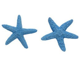 "Mini-Starfish Set 2. The large starfish measures 2"" x 2"" x 1/4"" and the small starfish measures 1 3/4"" x 1 3/4"" x 1/4"". By First Impressions."