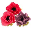"Anemone Cutter Set of 4, by JEM. Anemone cutters measure approximately 3"" x 3"". Instructions included."