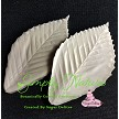 "Beech Leaf Veiner Large by Simply Nature Botanically Correct Products, was created by Jason Dontz and Jennifer Dontz of Sugar Delites, and creates the most realistic Beech Leaf interpretation possible. The large Beech leaf veiner measures 4 5/8"" x 2 1/2"". Simply Nature brand veiners capture each ruffle, pillow & vein because they were created from the actual top and the actual bottom of each leaf or petal, thus creating the most realistic replica of nature. Botanically correct veiners leave room for your wire and will not cut your paste and since the veiners were created by nature, they also shape and form your medium as well. Each Simply Nature Brand veiner is made in the USA and is poured using the highest quality platinum based, food approved silicone. A matching cutter(s) is not yet available for this item, but when it is, the corresponding item number will be CUT679."