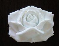 Rose Carved Flora 2