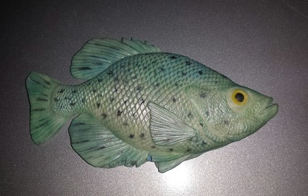 "Crappie Fish measures 4 1/2"" x 2 1/2"". Finished Crappie by Vonna Pauls."