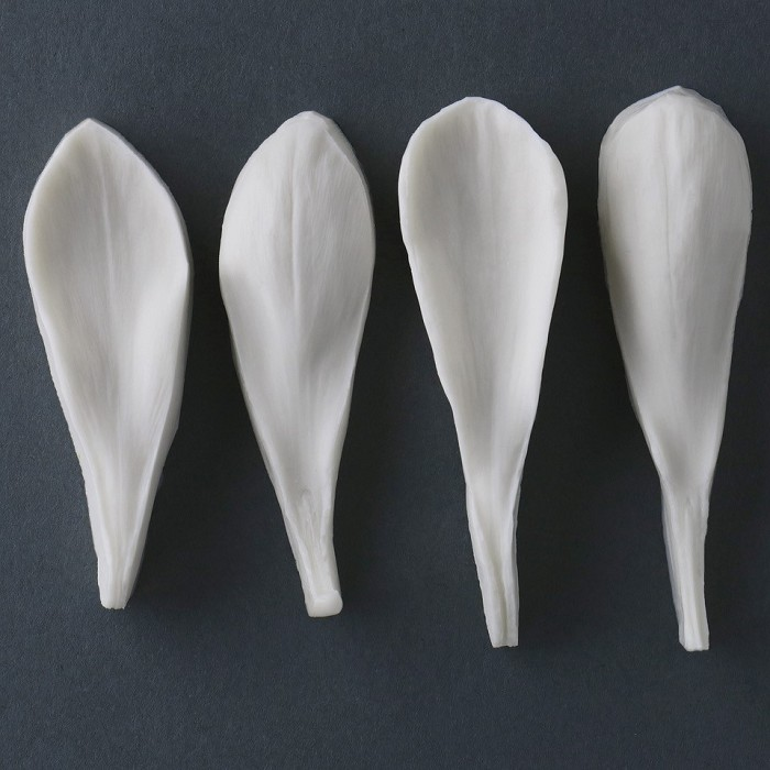 "Crocus petal silicone veiner measurements – petal length 6.8 cm x width 1.8 cm, larger petal length 7.1 cm x width 2.1 cm. (petal length 2 11/16"" x width 11/16"", larger petal length 2 13/16"" x width 13/16"").  This distinctive range of botanically correct products are designed by master sugar artist Robert Haynes.  These quality products can be used to replicate time and again, stunning life like flora in any edible or non-edible medium of your choice.  Robert personally selects each petal, leaf, flower center, fruit and bud to create a double-sided silicone mold capturing their shape, vein structure and unique botanical imprint, giving you the ultimate tools to reproduce stunning results.  All molds are hand poured at Sugar Delites (USA) using a high-quality platinum-based silicone, specially formulated for use in the food and confectionary industry and fully compliant to FDA and EU regulations.  They can be purchased at www.SugarDelites.com and other worldwide locations. Copyright © 2016 - Sugar Flower Studio Botanically Correct Products"