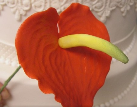 Anthurium Cutter Large