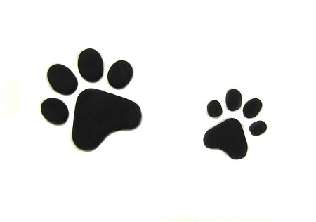 "Paw Print Set, by Jennifer Dontz, creates 2 different sized dog Paw Prints. The larger Paw Print design measures approximately 2"" x 2 1/4"" and the smaller Paw Print design measures approximately 1 1/4"" x 1 1/4""."