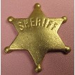 "Sheriff's Badge, by Jennifer Dontz, measures 2 1/2"" x 2 1/2"" x 1/4"". Finished Sheriff's Badge is made of chocolate and is painted with Gold Highlighter mixed with vodka."