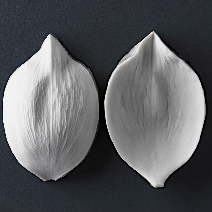 "Sacred Lotus large petal veiner measurements – petal length 9 cm x width 5.8 cm. (petal length 3 9/16"" x width 2 1/4""). This distinctive range of botanically correct products are designed by master sugar artist Robert Haynes.  These quality products can be used to replicate time and again, stunning life like flora in any edible or non-edible medium of your choice.  Robert personally selects each petal, leaf, flower center, fruit and bud to create a double-sided silicone mold capturing their shape, vein structure and unique botanical imprint, giving you the ultimate tools to reproduce stunning results.  All molds are hand poured at Sugar Delites (USA) using a high-quality platinum-based silicone, specially formulated for use in the food and confectionary industry and fully compliant to FDA and EU regulations.  They can be purchased at www.SugarDelites.com and other worldwide locations. Copyright © 2016 - Sugar Flower Studio Botanically Correct Products"