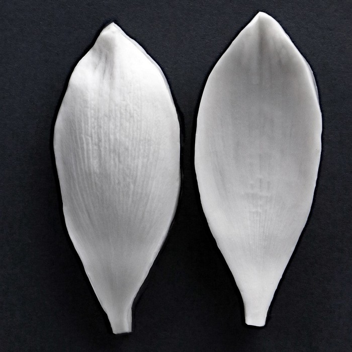 "Sacred Lotus Small petal veiner measurements – petal length 6.5 cm x width 2.2 cm. (petal length 2 9/16"" x width 7/8""). This distinctive range of botanically correct products are designed by master sugar artist Robert Haynes.  These quality products can be used to replicate time and again, stunning life like flora in any edible or non-edible medium of your choice.  Robert personally selects each petal, leaf, flower center, fruit and bud to create a double-sided silicone mold capturing their shape, vein structure and unique botanical imprint, giving you the ultimate tools to reproduce stunning results.  All molds are hand poured at Sugar Delites (USA) using a high-quality platinum-based silicone, specially formulated for use in the food and confectionary industry and fully compliant to FDA and EU regulations.  They can be purchased at www.SugarDelites.com and other worldwide locations. Copyright © 2016 - Sugar Flower Studio Botanically Correct Products"
