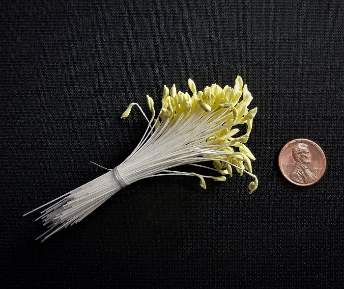 Stamens Yellow KM40. For size, please refer to the penny that is pictured.
